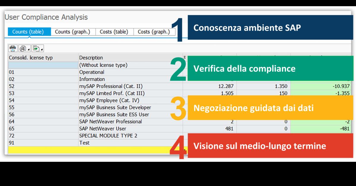 Strategia SAP